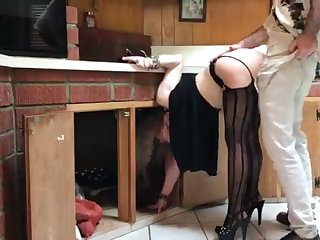 COUGAR stuck in the scullery drilled by neighbor (pin)